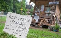 Best Lemonade in the Smokies!