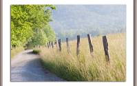 Hyatt Lane in Cades Cove