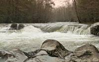 Swollen Creeks