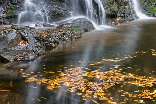 Spruce Flat Falls in Autumn