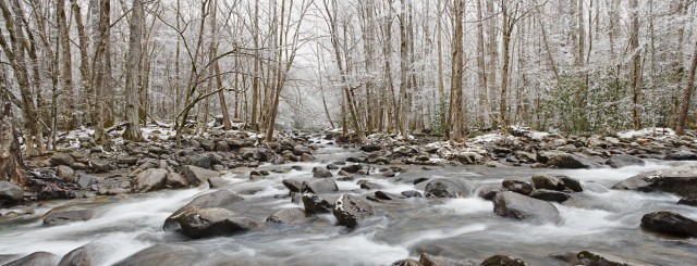 Smoky Mountains creek in winter