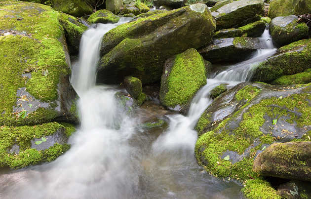 Roaring Fork creek in the Smoky Mountains