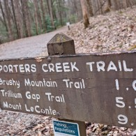 Favorite Trails: Porters Creek