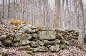 Rock wall in the Smoky Mountains