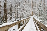 Snow-covered footbridge