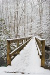 Winter footbridge