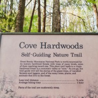 Wildflower Trails: Cove Hardwoods Nature Trail