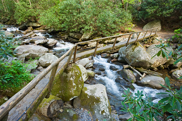 Smoky Mountains Footbridge  © William Britten use with permission only