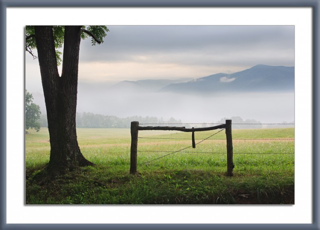 Cades-Cove-Morning-with-Fence