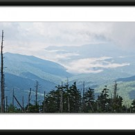 Wordless Wednesday: On Clingman's Dome
