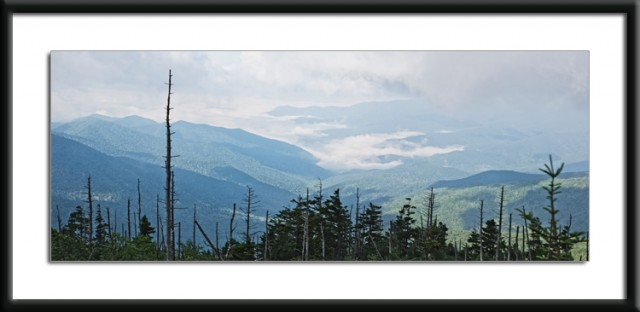 Clingman's Dome View © William Britten use with permission only