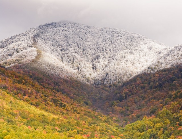 Autumn Snow on Mt. LeConte © William Britten use with permission only
