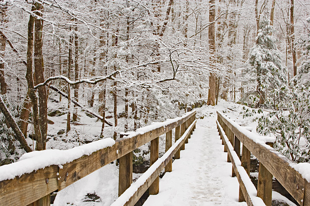 Greenbrier Footbridge in Winter © William Britten use with permission only