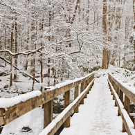 Featured Photo: Winter Footbridge