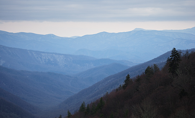 Newfound Gap in Winter © William Britten use with permission only