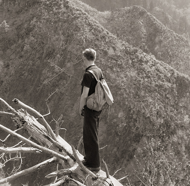Harvey Broome Surveys the Devastation after Logging © University of Tennessee Libraries