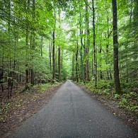 Roaring Fork Motor Trail Opens for the Season Today!