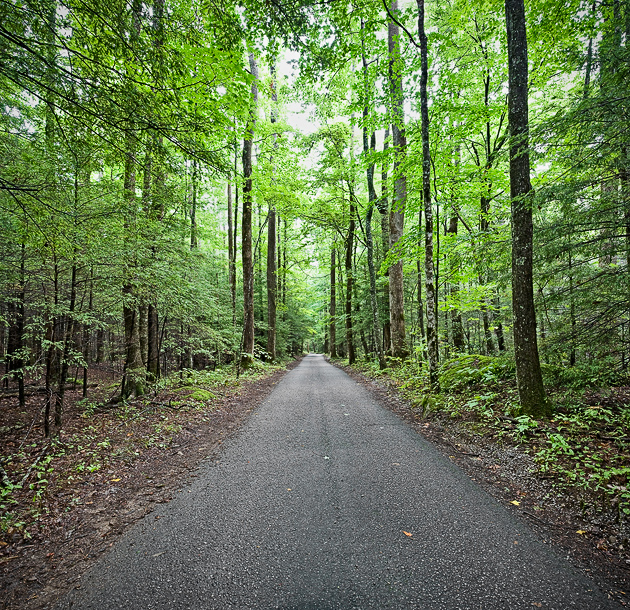 Roaring Fork Motor Trail Opens For The Season Today