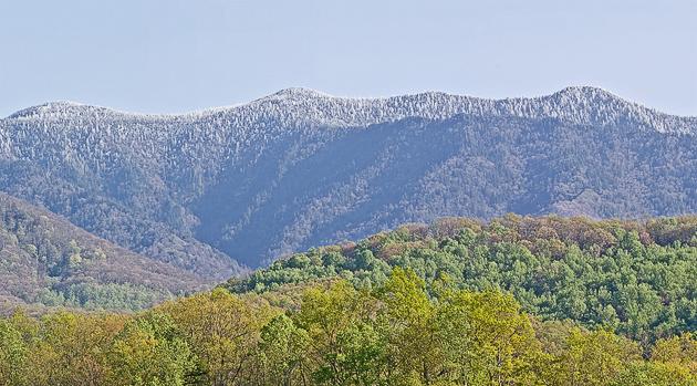 Mt. LeConte in April