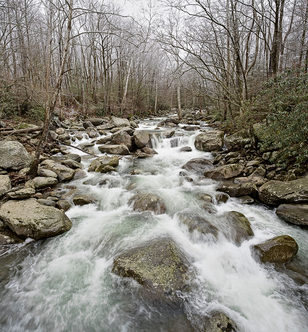 Smoky Mountains Creek