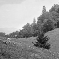 Smoky Mountains History: Indian Gap
