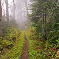 Easy High-elevation Hikes