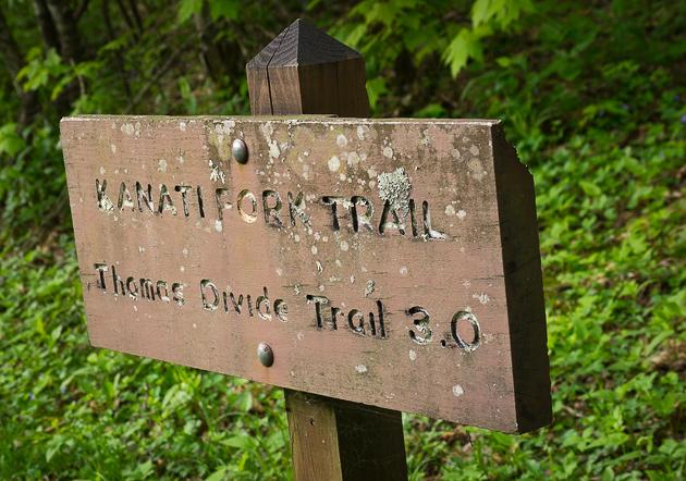 Smoky Mtn trail: Kanati Fork