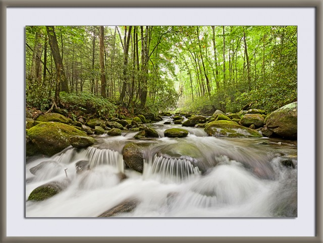 Roaring Fork in the Smoky Mountains © William Britten use with permission only