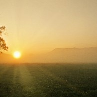 Early Morning Walk in Cades Cove