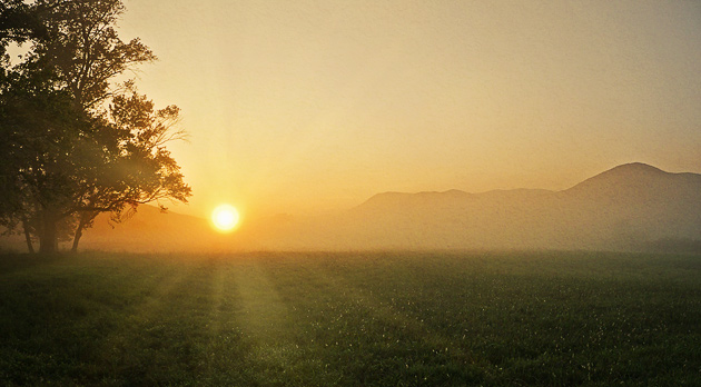 Sunrise from Sparks Lane