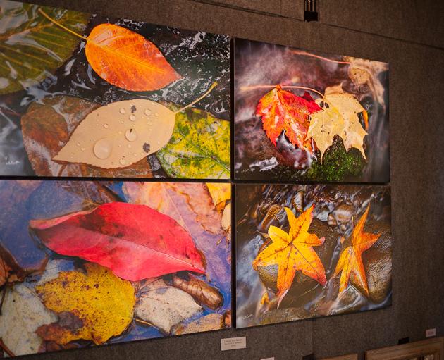 Leaf set panels in William Britten Gallery