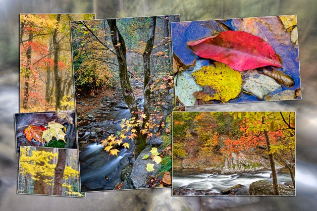 Smoky Mountains Autumn Montage