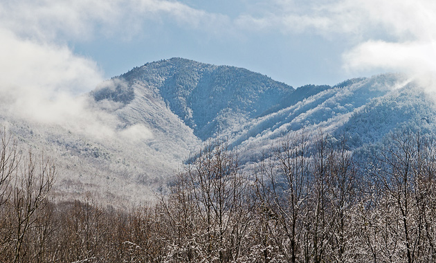 Mt. LeConte in Mist and Snow