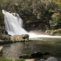 Favorite Trails: Abrams Falls