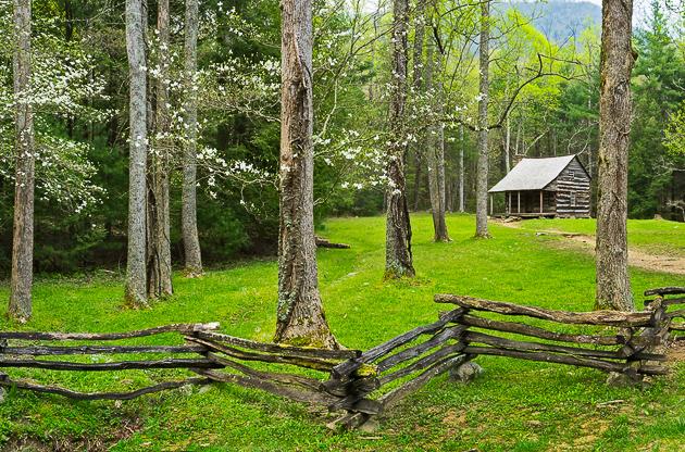 Smoky Mountains photos: Dogwood Home