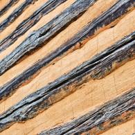 Textures in Wood