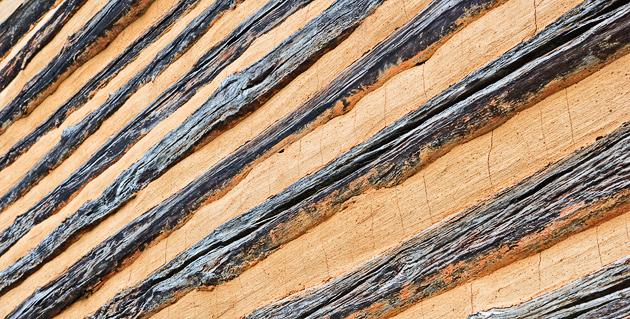 Log Cabin Close-up