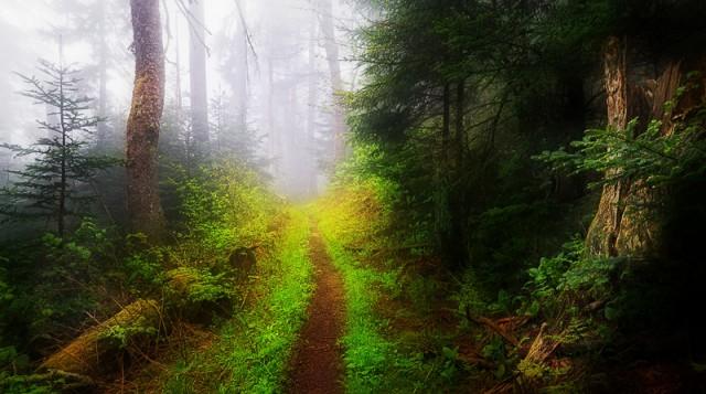Smoky Mtns photos: impressionism