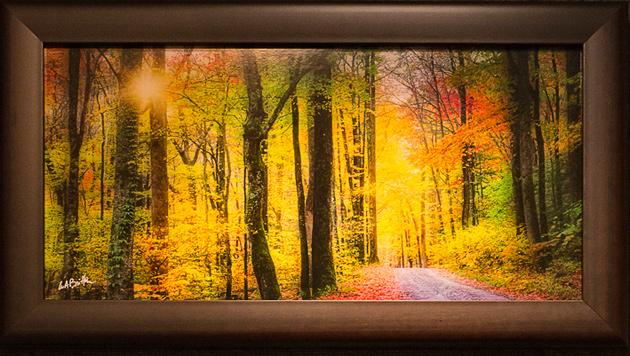 Smoky Mountains photos: autumn panorama