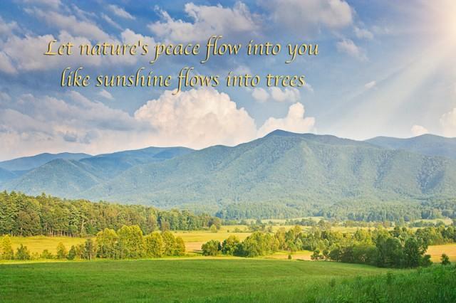 Smoky Mountain Inspiration