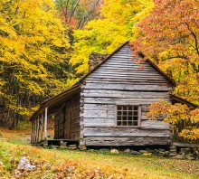 Autumn Homestead