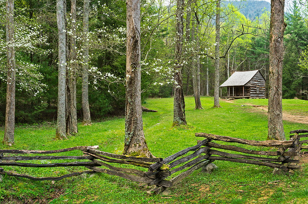 Smoky Mountains In Spring William Britten Photography