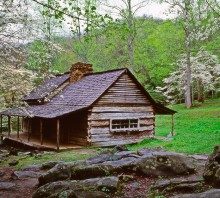 Springtime at the Ogle Cabin