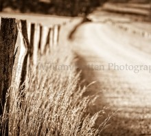 Country Road in Sepia