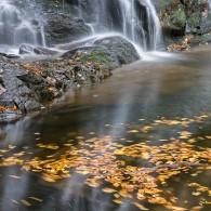 Favorite Trails: Spruce Flat Falls