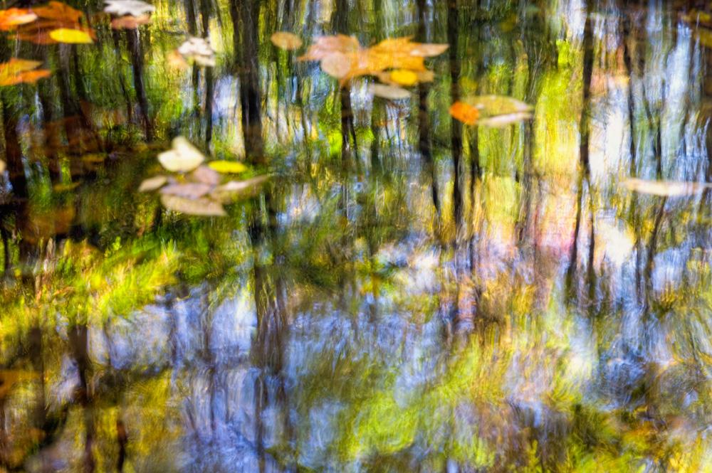 Featured Photo: Smoky Mountain Monet