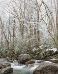 Winter scene of snow, trees, and water