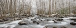 Smoky Mountain creek in winter