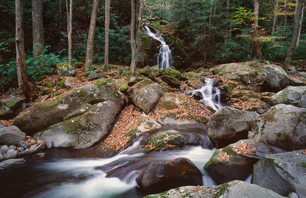 Favorite Trails: Big Creek to Midnight Hole and Mouse Creek Falls
