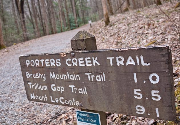 Favorite Trails: Porters Creek